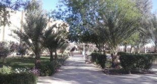 كلية العلوم الإقتصادية والتجارية وعلوم التسيير